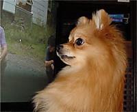 200318huku4