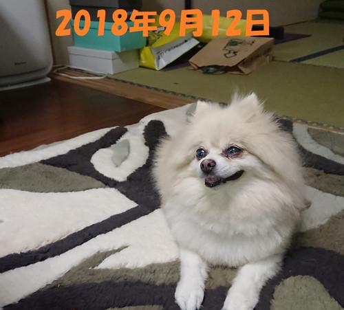 Yuki2_2